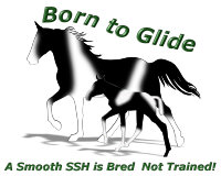 SSH Mare & Foal Born to Glide