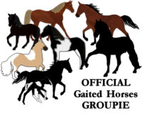 OFFICIAL Gaited Horses Groupie