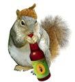 Squirrel Drinking Acorn Beer