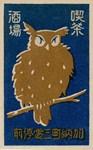 Japan Owl