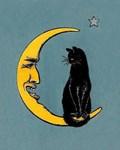 Black Cat, Moon