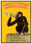 Chimpanzee, Wine