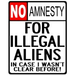 NO AMNESTY Road Sign Design T-shirts & Gifts