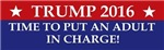 Trump 2016 an adult in charge