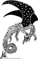Blackwinged Dragon