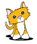 Peachy Skinny Kitty