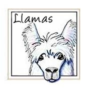 KiniArt Llama