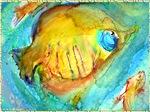 Tropical fish, fish art