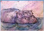 Hippo, animal art