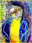 Blue, gold macaw, colorful bird art,