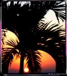 Tropical Sunset, photo!