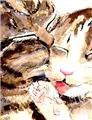 Kitty & Kat