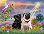 CLOUD ANGEL<br> & 2 Pugs