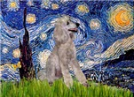 STARRY NIGHT<br>& Silver Standard Poodle #11