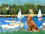 SAILBOATS<br>& Nova Scotia Duck Tolling Retriever