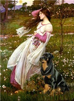 WINDFLOWERS<br>& Rottweiler