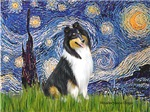 STARRY NIGHT<br>& Tri Color Collie