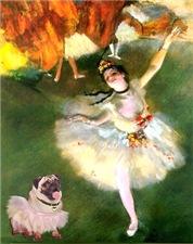 THE STAR<br>& Fawn Pug