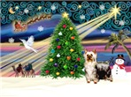 CHRISTMAS MAGIC<br>& Silky Terrier#5