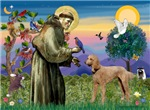 ST FRANCIS<br>& Standard Poodle