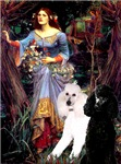 OPHELIA (IN THE WOODS)<br> & 2 Poodles