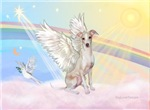 ANGEL IN THE CLOUDS<br> & Italian Greyhound