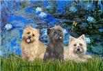 LILIES 3<br> & Cairn Terrier Trio