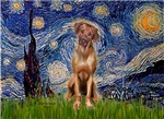 STARRY NIGHT<br>& Rhodesian Ridgeback