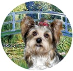 Yorkshire Terrier (Briewer)<br>in Lily Pond Bridge
