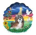 Star Wish - Shih Tzu #8