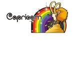 Capricorn t-shirts, birthday gifts