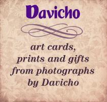 Davicho