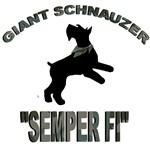 semper fi giant schnauzer