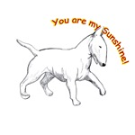 Bull Terrier you are my sunshine