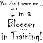 YDSM Blogger-in-Training