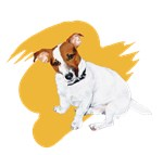 Colorful JRT Painting