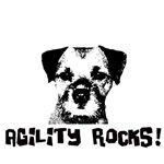 Agility Rocks!