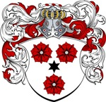 Jans Family Crest, Coat of Arms