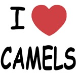 I heart camels