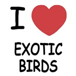 I heart exotic birds