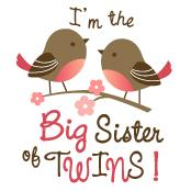 Big Sister of Twins - Mod Bird