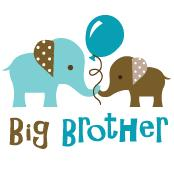 Big Brother - Elephant