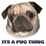 Its a Pug Thing