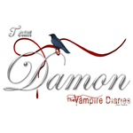 Team Damon The Vampire Diaries Raven Ribbon2