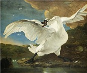 Asselijn's The Threatened Swan