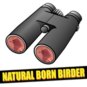 Natural Born Birder