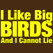 I Like Big BIRDS