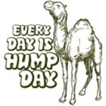 Hump Day Everyday