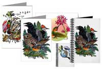 Greeting Cards & Sketching Journals