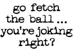 go fetch the ball
